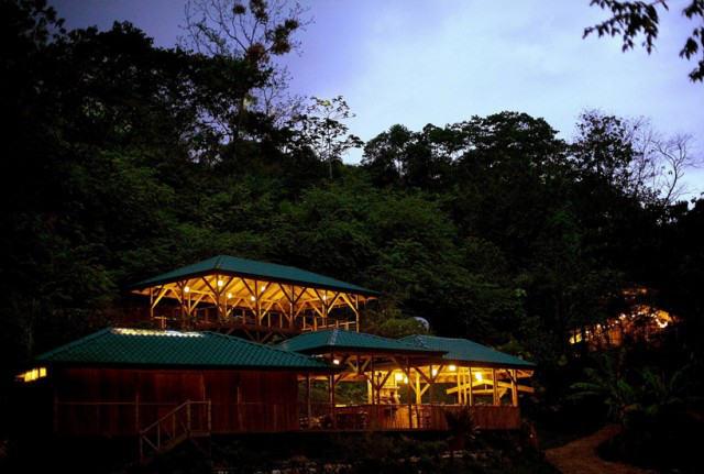 http://mirror.skamasle.com/img/casaarbol/Sustainable-TreeHouse-640x431.jpg