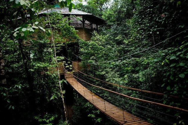 http://mirror.skamasle.com/img/casaarbol/Sustainable-TreeHouse10-640x427.jpg
