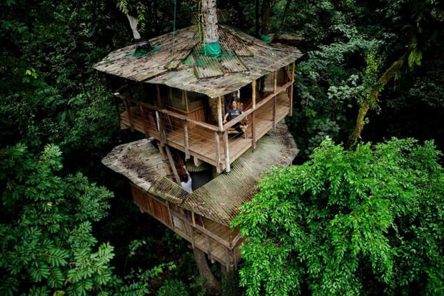 http://mirror.skamasle.com/img/casaarbol/Sustainable-TreeHouse4-640x427.jpg