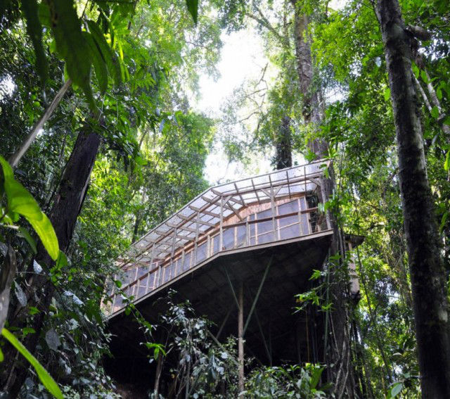 http://mirror.skamasle.com/img/casaarbol/Sustainable-TreeHouse6-640x567.jpg