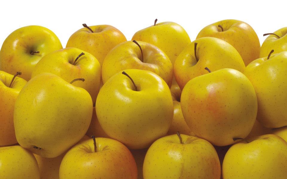 Manzanas Amarillas fotos