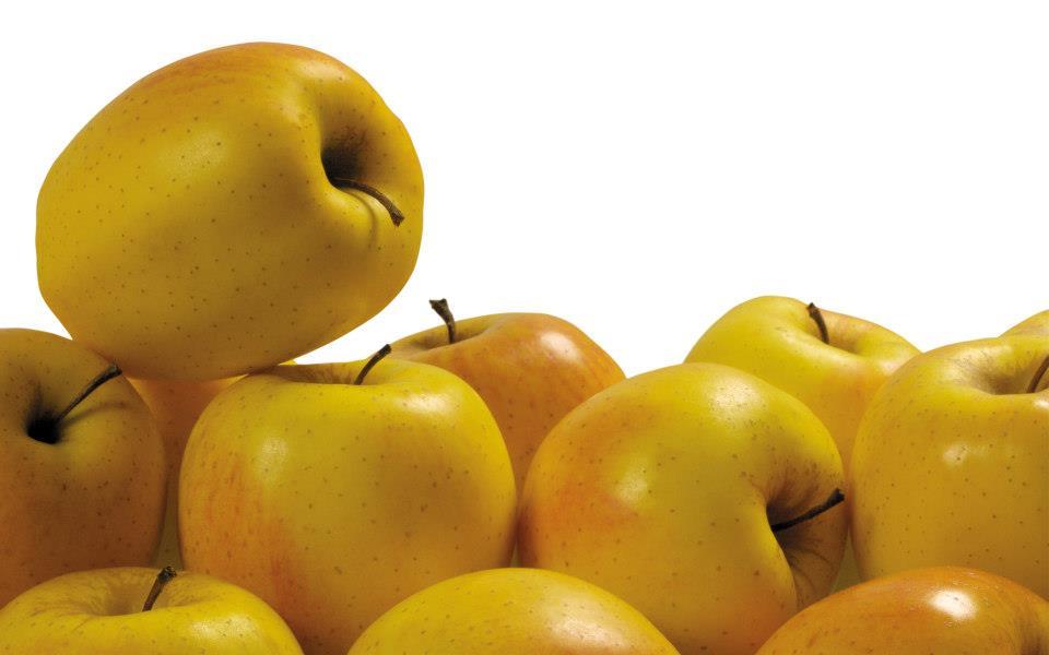 Manzanas Amarillas fotos 2