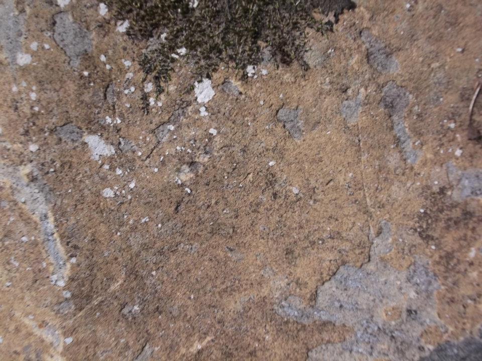 Foto Textura Piedra