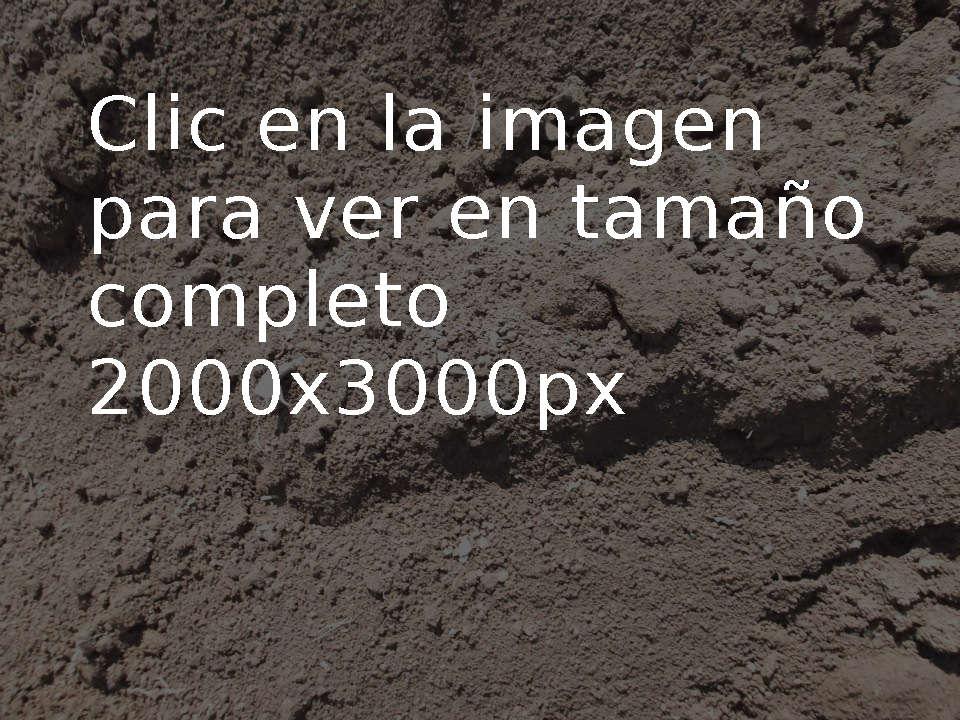 Foto Textura Tierra